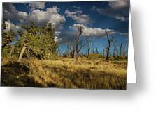 Clouds Over Mesa Verde Greeting Card