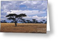 Clouds Over The Masai Mara Greeting Card