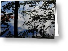 Clouds Tree Water Greeting Card