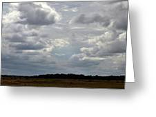 Cloudy Day At Dinenr Island Ranch Greeting Card