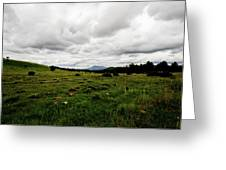 Cloudy Meadow Greeting Card