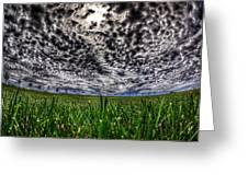Cloudy Sky's Grassy Field Greeting Card