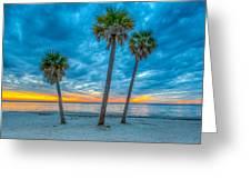 Cloudy Sunset -tampa, Florida Greeting Card