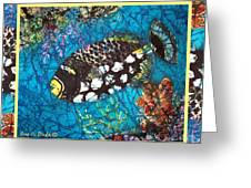 Clown Triggerfish-bordered Greeting Card
