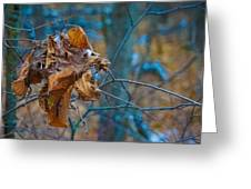 Clump Of Fall - Early Winter Greeting Card