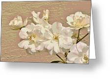 Cluster Of White Roses Posterized Greeting Card