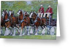 Clydesdale Hitch Greeting Card by Anda Kett