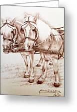 Coach Horses Greeting Card