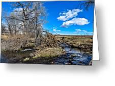 Coal Creek Greeting Card