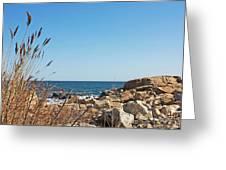 Coast Greeting Card