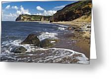 Coast Line Greeting Card