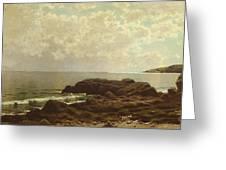 Coast Off Grand Manan Greeting Card