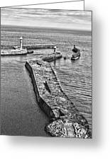 Coast - Whitby Harbour Greeting Card
