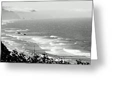 Coastal Bandw Greeting Card