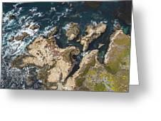 Coastal Crevices Greeting Card
