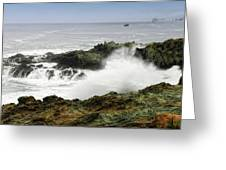 Coastal Expressions Greeting Card