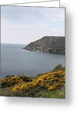 Coastal Path Cornwall Greeting Card