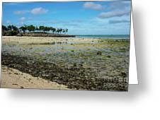 Coastal Textures Greeting Card