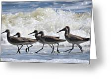 Coastal Togetherness Greeting Card