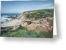 Coastal Views At Bodega Bay Greeting Card