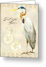 Coastal Waterways - Great Blue Heron Greeting Card