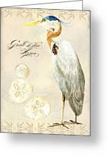 Coastal Waterways - Great Blue Heron Greeting Card