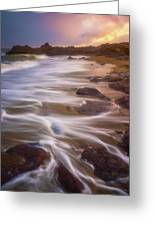 Coastal Whispers Greeting Card
