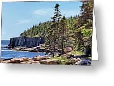 Coastline And Otter Cliff 4 Greeting Card