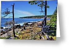 Coastline At Otter Point 1 Greeting Card