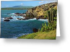 Coastline-micoud- St Lucia Greeting Card