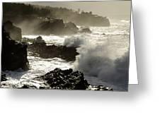 Coastline Oregon Greeting Card