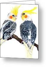 Cockatiels Greeting Card