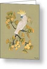 Cockatoo And Ginkgo Tree Greeting Card