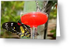 Cocktail Hour Greeting Card