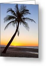 Coco Mo Tropical Sunrise Greeting Card