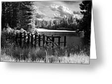 Cocolala Creek Slough 2 Greeting Card