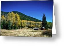 Coconino National Forest Greeting Card