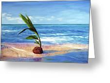 Coconut On Beach Greeting Card