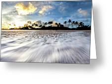 Coconut Rush Greeting Card
