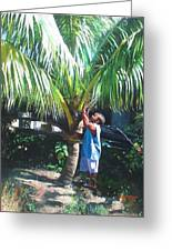 Coconut Shade Greeting Card