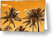 Coconut Trees Greeting Card
