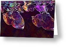 Cocoons Butterflies Larva Larvae  Greeting Card