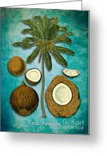 Cocos Nucifera Greeting Card