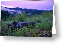 Coeur D'alene Mountains Greeting Card
