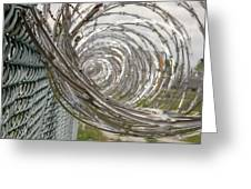 Coiled Razor Wire On Fence Greeting Card
