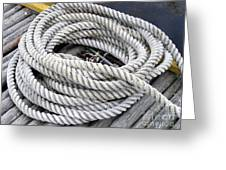 Coiled Rope  Greeting Card