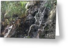 Coki Waterfall Greeting Card