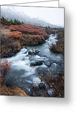 Cold Creek In Autumn Greeting Card