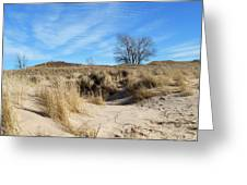 Cold Dune Day Greeting Card