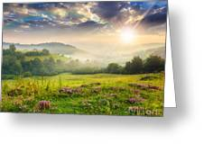 Cold Fog In Mountains On Forest At Sunset Greeting Card